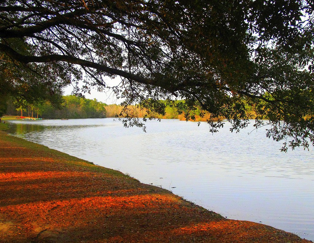 sesquicentennial state park - photo #20